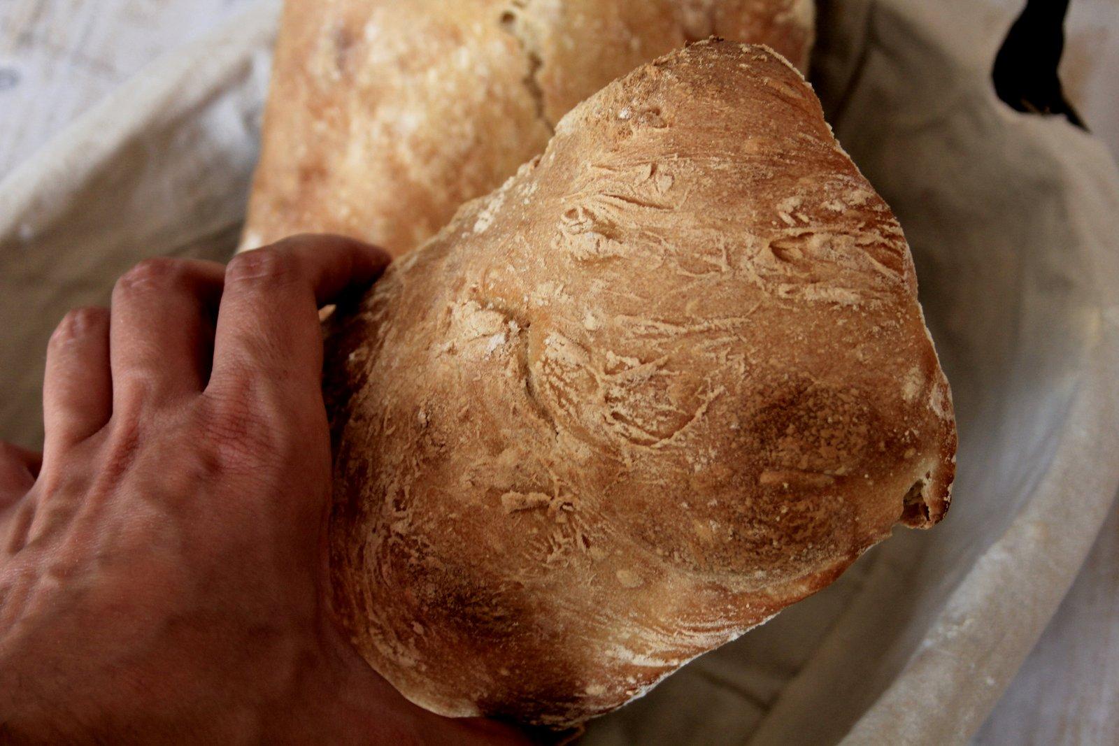 domáca ciabatta - recept