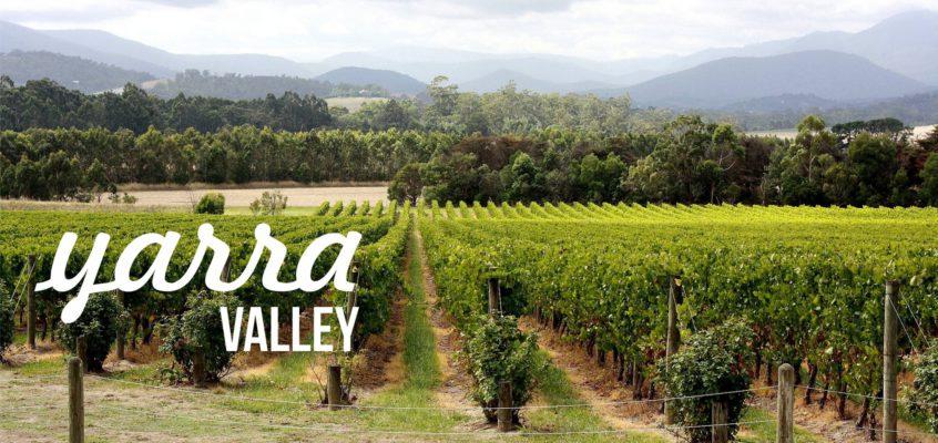 V Yarra Valley